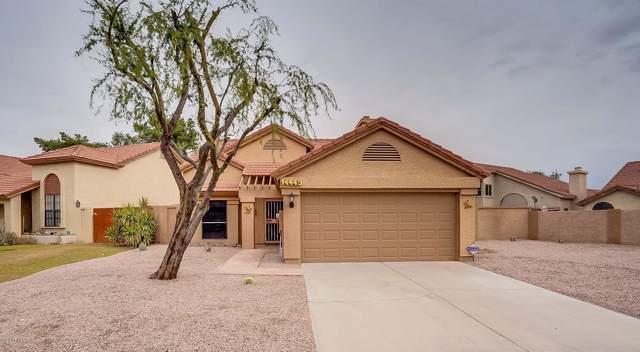 14449 S 42ND Street, Phoenix, AZ 85044 (MLS #6025549) :: Scott Gaertner Group