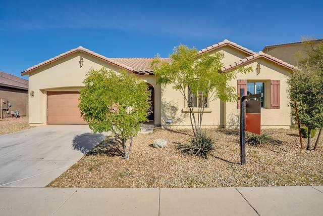 18544 W Cinnabar Avenue, Waddell, AZ 85355 (MLS #6025936) :: Cindy & Co at My Home Group