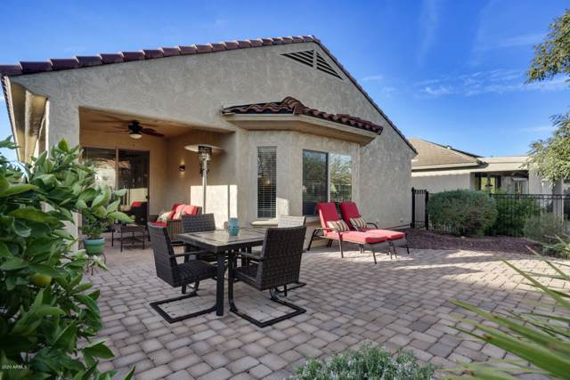 27032 W Tonopah Drive, Buckeye, AZ 85396 (MLS #6027508) :: Revelation Real Estate