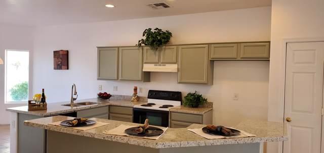 12375 W Grant Street, Avondale, AZ 85323 (MLS #6027895) :: Devor Real Estate Associates