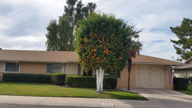 9460 N 110TH Avenue, Sun City, AZ 85351 (MLS #6028364) :: Nate Martinez Team