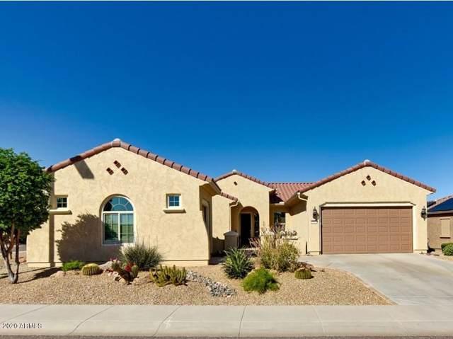 27033 W Behrend Drive, Buckeye, AZ 85396 (MLS #6028891) :: Revelation Real Estate
