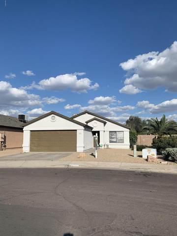 4741 N 85TH Avenue, Phoenix, AZ 85037 (MLS #6029506) :: The Laughton Team