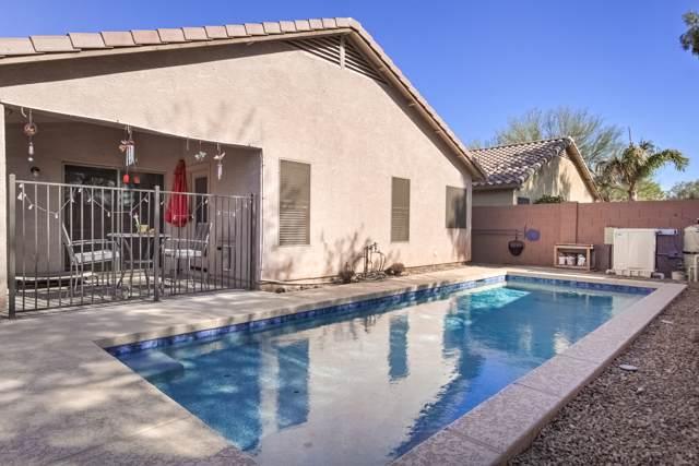 333 W Dexter Way, San Tan Valley, AZ 85143 (MLS #6029685) :: Conway Real Estate