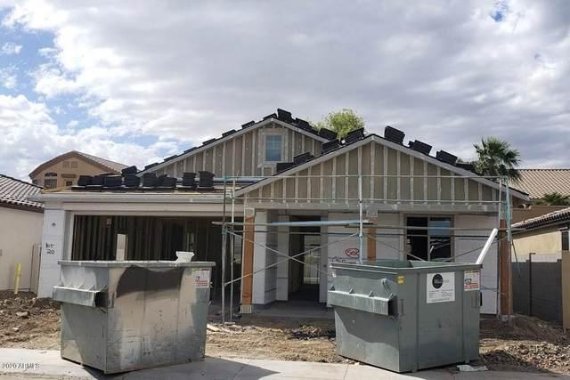 16208 S 8TH Street, Phoenix, AZ 85048 (MLS #6030491) :: Arizona Home Group