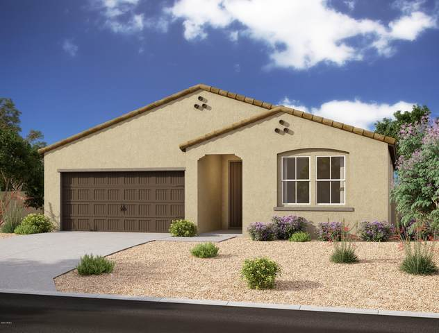 36751 N Bristlecone Drive, San Tan Valley, AZ 85140 (MLS #6031190) :: The Laughton Team