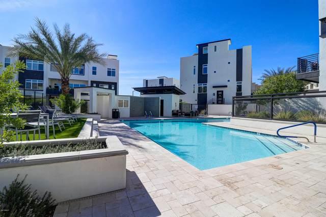 1717 E Morten Avenue #46, Phoenix, AZ 85020 (MLS #6031614) :: Klaus Team Real Estate Solutions