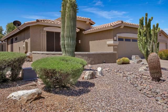 8241 E Masters Road, Gold Canyon, AZ 85118 (MLS #6031671) :: The Laughton Team