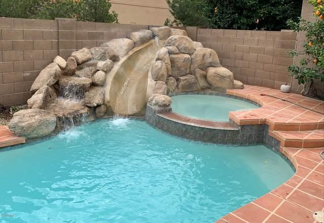 1105 S Amandes Street, Mesa, AZ 85208 (MLS #6033292) :: Conway Real Estate