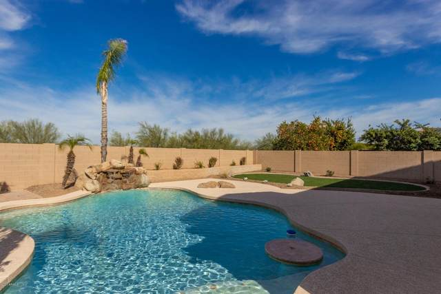 7676 W Donald Drive, Peoria, AZ 85383 (MLS #6034053) :: The Laughton Team