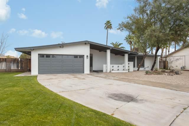 9233 N 40TH Drive, Phoenix, AZ 85051 (MLS #6034271) :: Revelation Real Estate