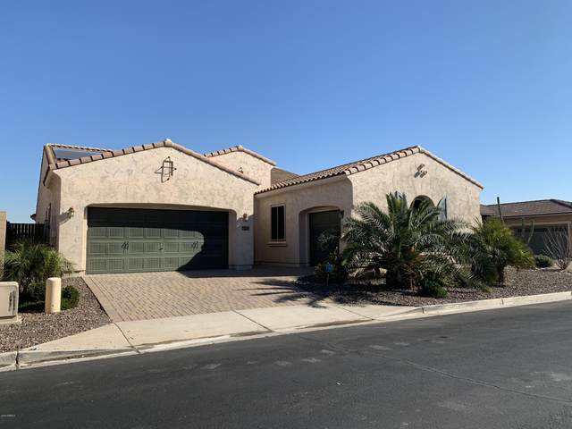 14304 W Coronado Road, Goodyear, AZ 85395 (MLS #6034882) :: Brett Tanner Home Selling Team