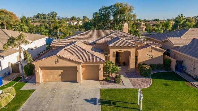 1587 W Yosemite Place, Chandler, AZ 85248 (MLS #6034892) :: Conway Real Estate