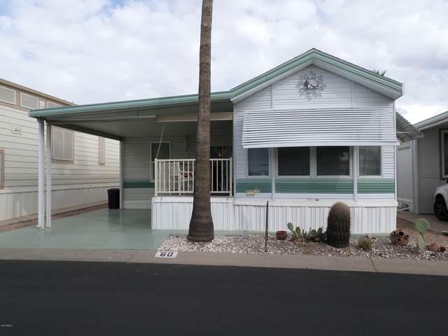 60 S Jacknife Drive, Apache Junction, AZ 85119 (MLS #6034965) :: The Kenny Klaus Team