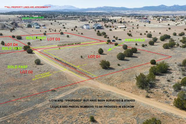 12XX1 E Cougar Ridge Road, Paulden, AZ 86334 (MLS #6035813) :: Yost Realty Group at RE/MAX Casa Grande