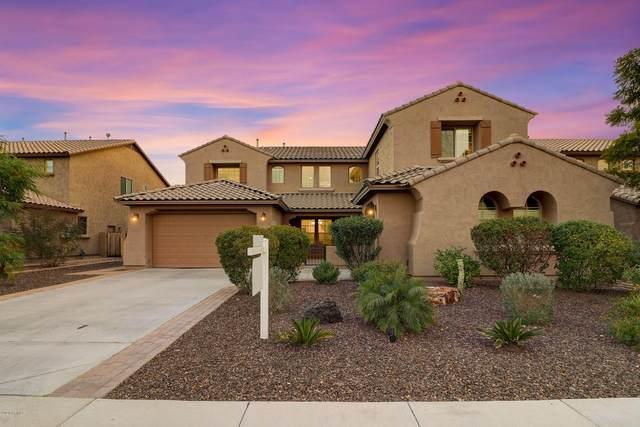 5607 W Cavedale Drive, Phoenix, AZ 85083 (MLS #6036174) :: RE/MAX Desert Showcase
