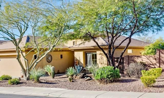 40902 N Noble Hawk Way, Anthem, AZ 85086 (MLS #6036434) :: Kepple Real Estate Group