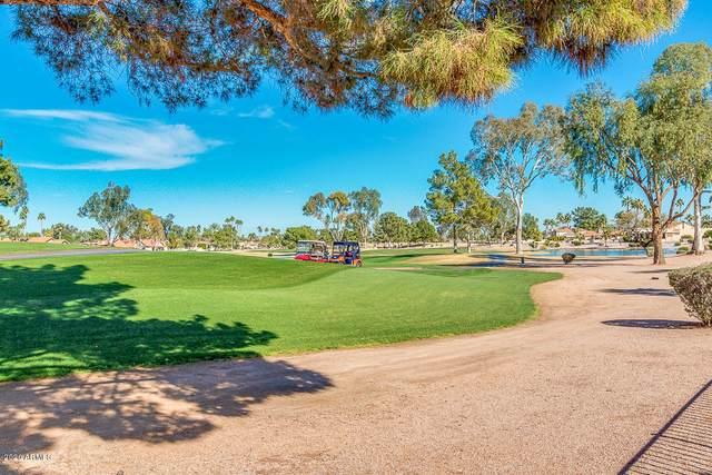 25631 S Howard Drive, Sun Lakes, AZ 85248 (MLS #6036586) :: Brett Tanner Home Selling Team