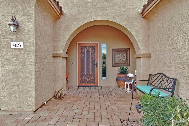 4657 E Odessa Drive, San Tan Valley, AZ 85140 (MLS #6036620) :: Brett Tanner Home Selling Team