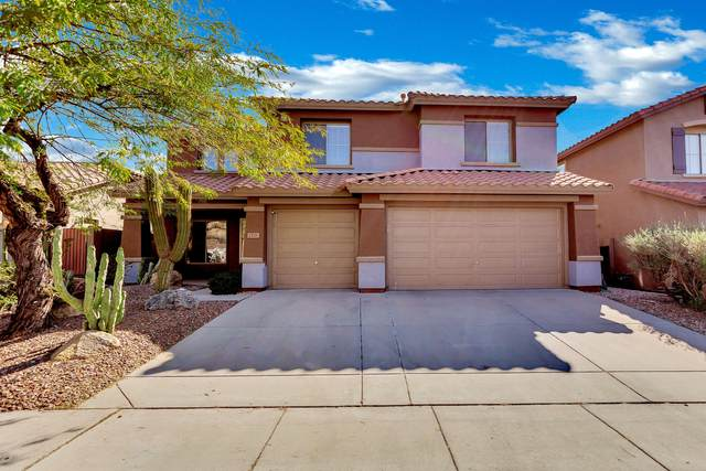 2521 W Kit Carson Trail, Phoenix, AZ 85086 (MLS #6036966) :: Revelation Real Estate
