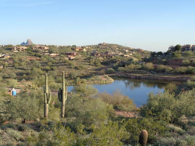 15320 E Hidden Springs Trail, Fountain Hills, AZ 85268 (MLS #6037932) :: Balboa Realty