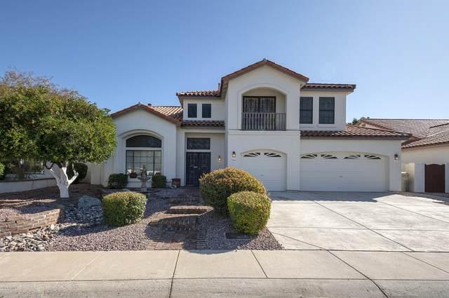 5516 W Aster Drive, Glendale, AZ 85304 (MLS #6038403) :: The Daniel Montez Real Estate Group