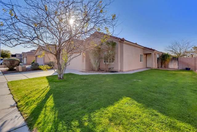 9159 W Deanna Drive, Peoria, AZ 85382 (MLS #6039218) :: Revelation Real Estate
