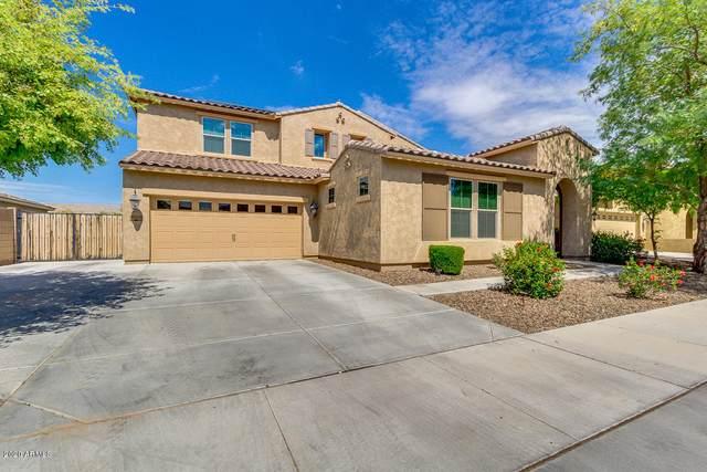 20056 E Escalante Road, Queen Creek, AZ 85142 (MLS #6039272) :: Revelation Real Estate
