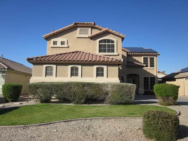 15986 W Morenci Street, Goodyear, AZ 85338 (MLS #6039419) :: Nate Martinez Team