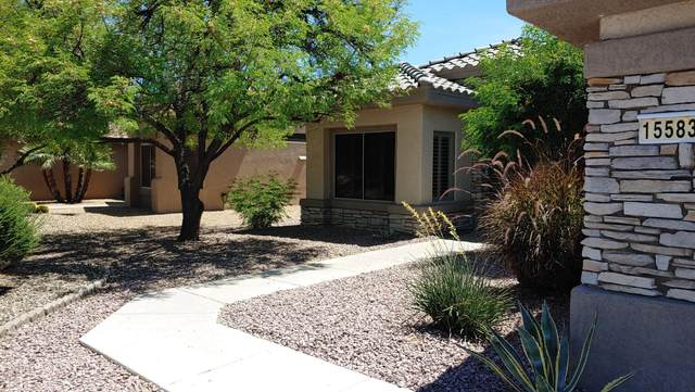 15583 W Grand Creek Lane, Surprise, AZ 85374 (MLS #6039813) :: Long Realty West Valley