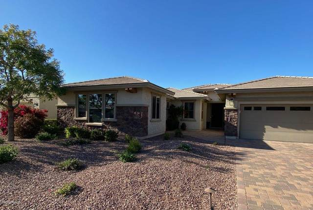 14842 W Aldea Drive N, Litchfield Park, AZ 85340 (MLS #6040680) :: Riddle Realty Group - Keller Williams Arizona Realty