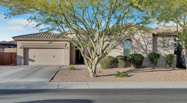 13420 W Tyler Trail, Peoria, AZ 85383 (MLS #6040734) :: The Property Partners at eXp Realty