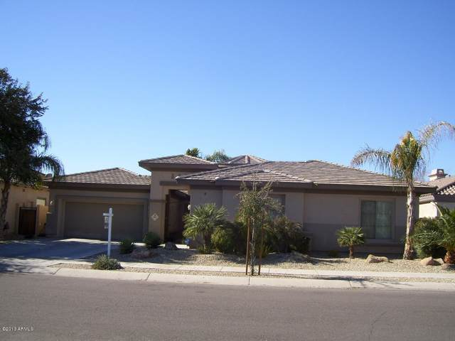 80 N Parkview Lane, Litchfield Park, AZ 85340 (MLS #6040833) :: neXGen Real Estate