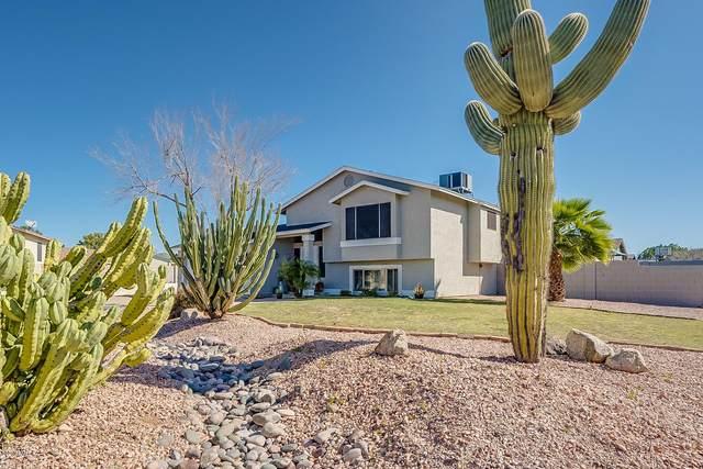 7344 E Gary Street, Mesa, AZ 85207 (MLS #6041424) :: The Kenny Klaus Team