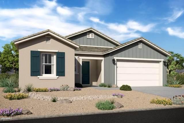 20512 W Rosewood Lane, Buckeye, AZ 85396 (MLS #6041661) :: Long Realty West Valley