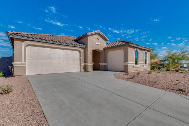 30568 W Clarendon Avenue, Buckeye, AZ 85396 (MLS #6041690) :: The Daniel Montez Real Estate Group