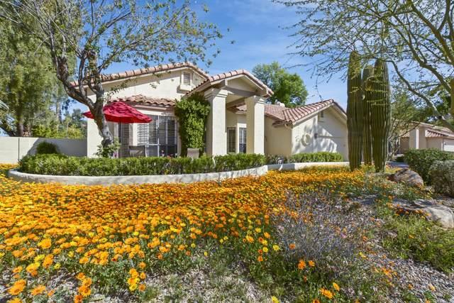 220 E Caroline Lane, Tempe, AZ 85284 (MLS #6041692) :: CANAM Realty Group