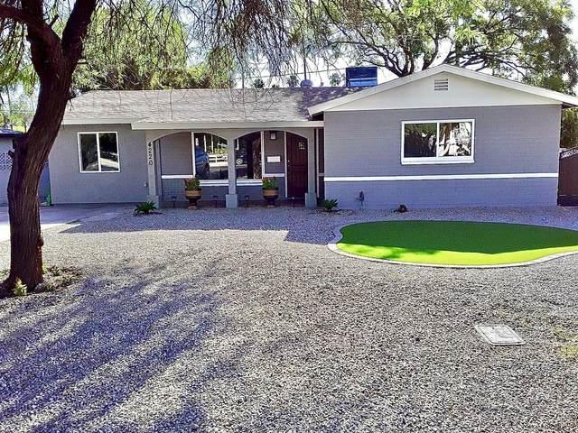 4220 N 36TH Street, Phoenix, AZ 85018 (MLS #6042353) :: Brett Tanner Home Selling Team