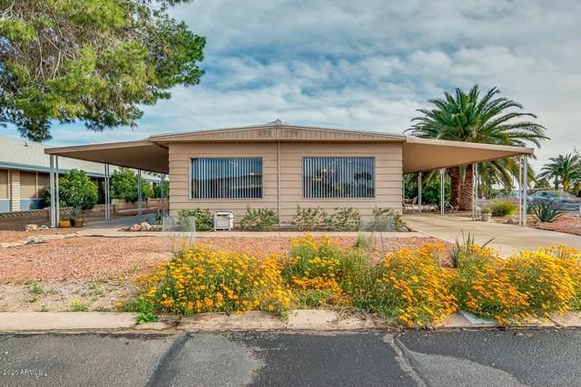 8305 E Deep Canyon Court, Mesa, AZ 85208 (MLS #6042829) :: Brett Tanner Home Selling Team