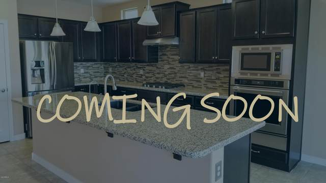 700 E Gold Dust Way, San Tan Valley, AZ 85143 (MLS #6042995) :: Revelation Real Estate