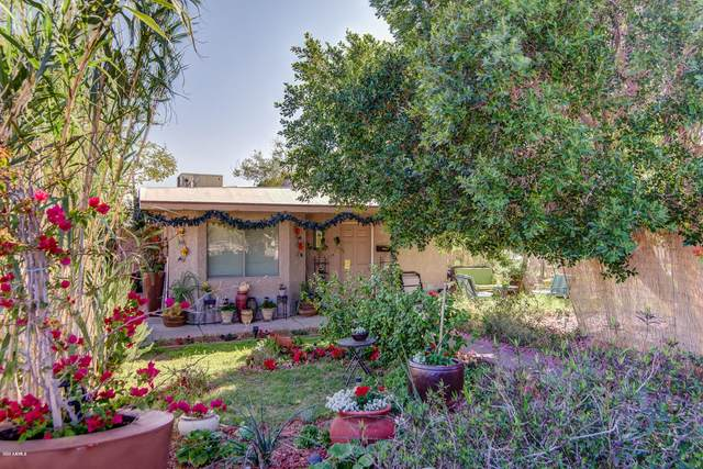 1325 E Hatcher Road, Phoenix, AZ 85020 (MLS #6043808) :: Brett Tanner Home Selling Team