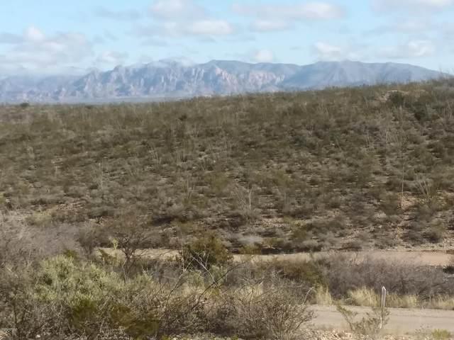 tbd North Street, Tombstone, AZ 85638 (MLS #6044339) :: Yost Realty Group at RE/MAX Casa Grande