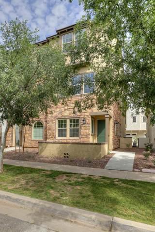 1739 E Dogwood Lane, Gilbert, AZ 85295 (MLS #6045446) :: Klaus Team Real Estate Solutions