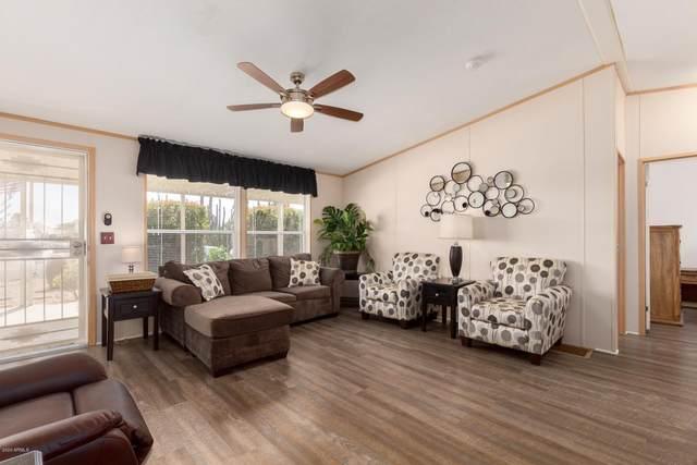 8212 E Desert Trail, Mesa, AZ 85208 (MLS #6045563) :: Brett Tanner Home Selling Team