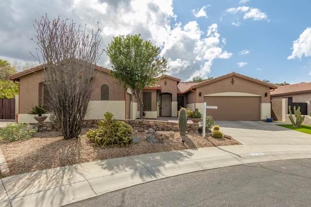 6103 W Hedgehog Place, Phoenix, AZ 85083 (MLS #6045728) :: Brett Tanner Home Selling Team