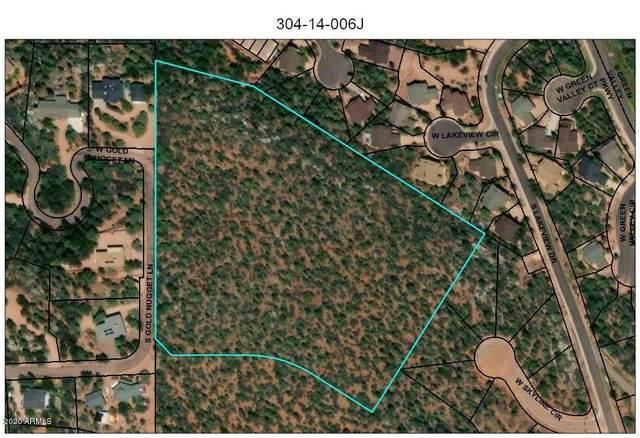 TBD S Gold Nugget Lane, Payson, AZ 85541 (MLS #6046048) :: Conway Real Estate