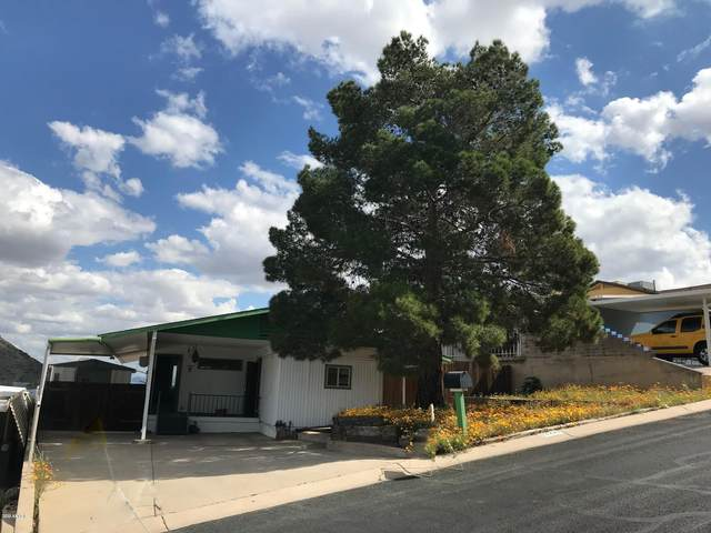 13227 N 18th Street, Phoenix, AZ 85022 (MLS #6047652) :: Brett Tanner Home Selling Team