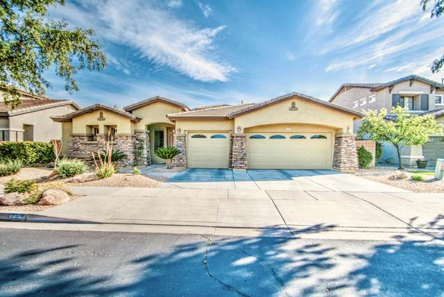 285 W Seagull Place, Chandler, AZ 85286 (MLS #6048234) :: Long Realty West Valley