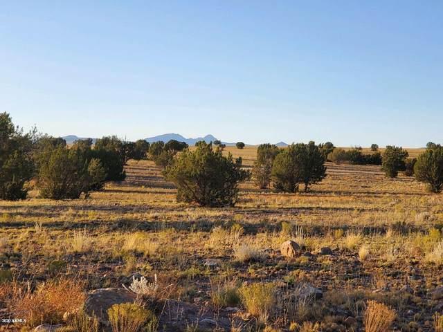 340 S Heartbreak Ridge, Ash Fork, AZ 86320 (MLS #6049527) :: Arizona 1 Real Estate Team