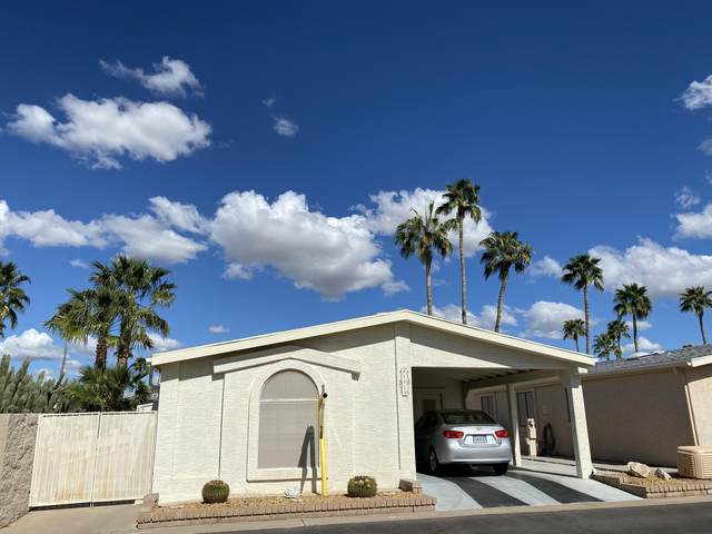 6137 S Pinehurst Drive, Chandler, AZ 85249 (MLS #6049558) :: The Bill and Cindy Flowers Team